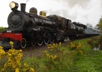 Steam Train-Lake Brunner