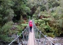 Walks around Lake Brunner